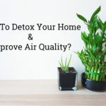 <a class=&quot;amazingslider-posttitle-link&quot; href=&quot;http://www.sustainabilitytribe.com/how-to-detox-your-home-and-improve-indoor-air-quality/&quot;>How To Detox Your Home &amp; Improve Indoor Air Quality?</a>